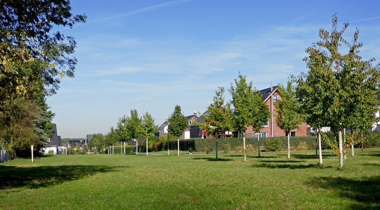 Ansicht 01 Wohnbebauung Feldstraße/Hahnenbergstraße – Herten-Langenbochum Planquadrat Dortmund