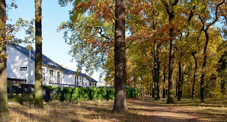 Ansicht DSC0532bk Bebauungsplan Wohngebiet Hohenbuschei Planquadrat Dortmund