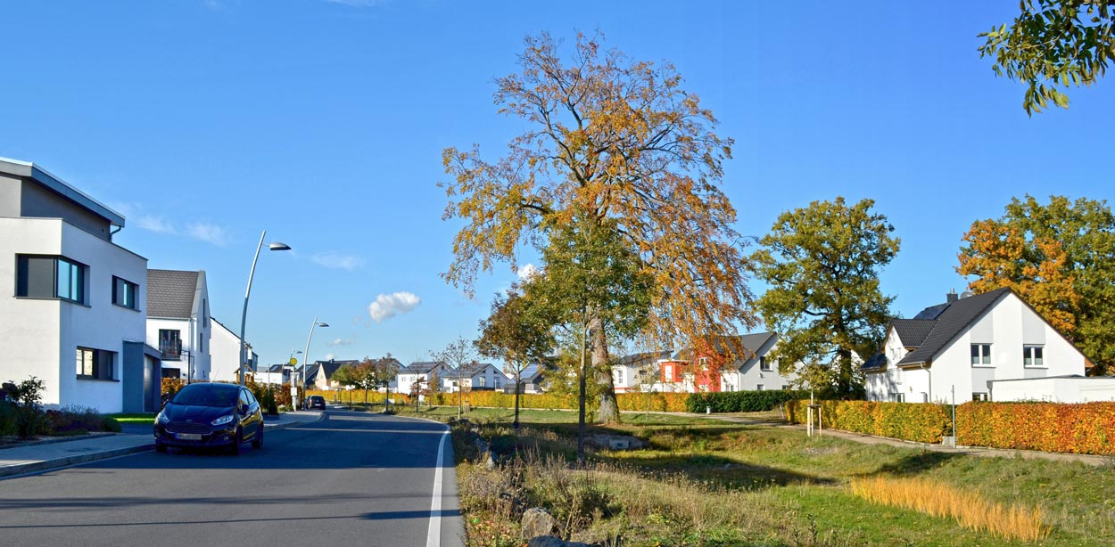 Ansicht DSC0555k Bebauungsplan Wohngebiet Hohenbuschei Planquadrat Dortmund